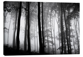 Stampa su tela  Foggy Woods - The Irish Image Collection