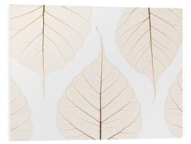 Forex  Transparent leaves - Kelly Redinger