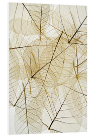 Forex  Layered Leaves - Kelly Redinger