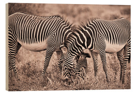Legno  Two Zebras Grazing Together - David DuChemin