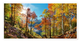 Poster Premium Mountain forest in autumn