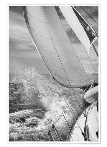 Poster Sailing black / white
