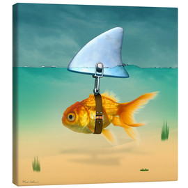 Tela  gold fish - Mark Ashkenazi