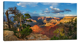 Stampa su tela  Grand Canyon with knotty pine - Michael Rucker
