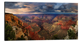 Stampa su alluminio  Grand Canyon View - Michael Rucker
