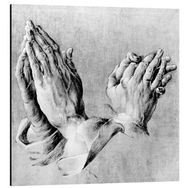 Stampa su alluminio  Hands of the Pope and an apostle - Albrecht Dürer
