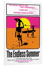 Forex  The endless summer
