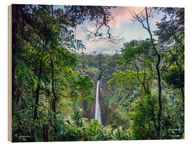 Matteo Colombo - Rainforest and Waterfall, Costa Rica