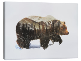 Stampa su tela  Arctic Grizzly Bear - Andreas Lie