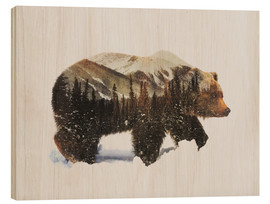 Stampa su legno  Arctic Grizzly Bear - Andreas Lie