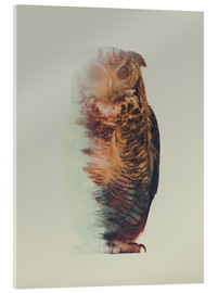 Stampa su vetro acrilico  Norwegian Woods The Owl - Andreas Lie