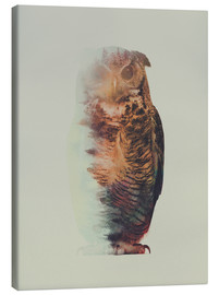 Stampa su tela  Norwegian Woods The Owl - Andreas Lie