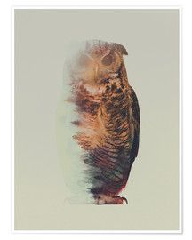 Poster Premium  Norwegian Woods The Owl - Andreas Lie