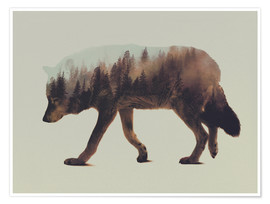 Poster Premium  Norwegian Woods The Wolf - Andreas Lie
