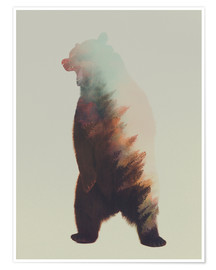 Poster Premium  Norwegian Woods The Bear - Andreas Lie