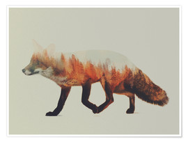Poster Premium  Norwegian Woods The Fox - Andreas Lie