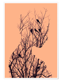 Poster  birds - Andreas Lie