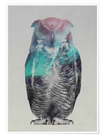 Poster Premium  Owl in the aurora borealis - Andreas Lie