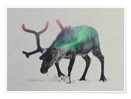 Poster Premium  reindeer in the aurora borealis - Andreas Lie