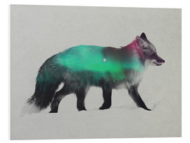 Forex  Fox In The Aurora Borealis - Andreas Lie