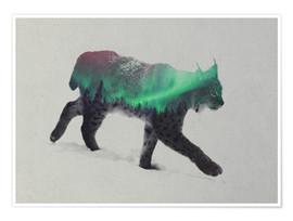 Poster Premium  Lynx in the aurora borealis - Andreas Lie