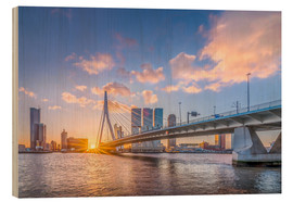 Remco Gielen - Rotterdam The Erasmus Bridge