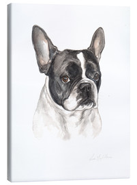 Stampa su tela  Bulldog francese, bianco e nero - Lisa May Painting