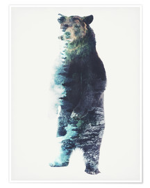 Poster Premium  Bear in the Woods - Barrett Biggers