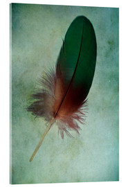 Vetro acrilico  Green feather - Jaroslaw Blaminsky