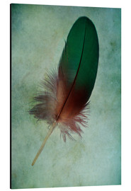 Alluminio Dibond  Green feather - Jaroslaw Blaminsky