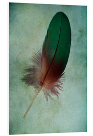 Forex  Green feather - Jaroslaw Blaminsky