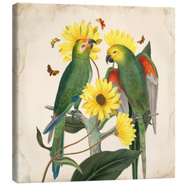 Tela  Oh My Parrot II - Mandy Reinmuth