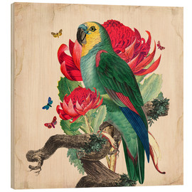 Legno  Oh My Parrot X - Mandy Reinmuth