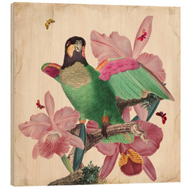 Legno  Oh My Parrot VIII - Mandy Reinmuth