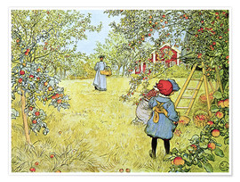 Poster Premium The Apple Harvest