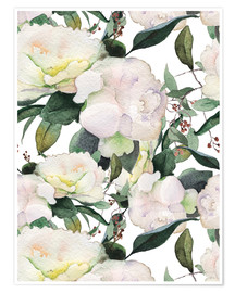 Poster  White Peony in watercolor