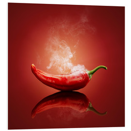 Forex  Red Hot smoking Chili still life - Johan Swanepoel