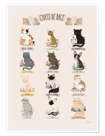 Poster Premium  cat breeds - Kanzilue