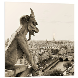 Schiuma dura  Gargoyle over Paris