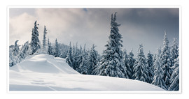 Poster Premium Winter in the Mountains