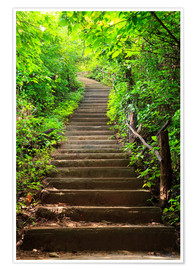 Poster  Stairway to forest