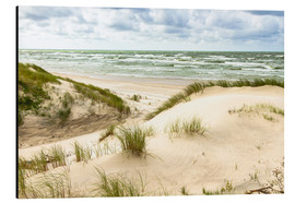 Alluminio Dibond  Sand dunes on the Baltic sea