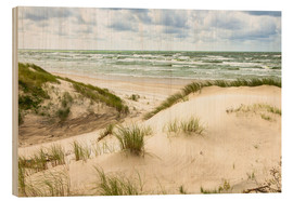 Legno  Sand dunes on the Baltic sea