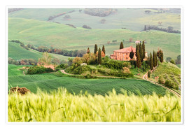 Poster Premium typical Tuscany landscape