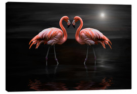 Stampa su tela  Flamingos at night - Heike Langenkamp