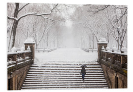 Forex  Inverno a Central Park