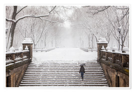 Poster  Inverno a Central Park