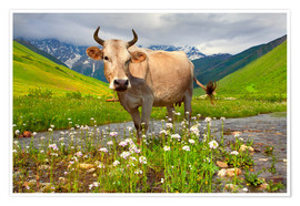 Poster Premium  Cattle on a mountain pasture