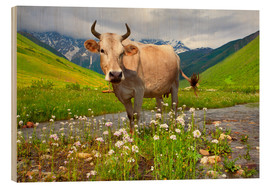Legno  Cattle on a mountain pasture
