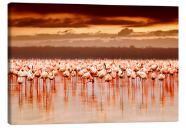 Stampa su tela  Flamingos at sunset